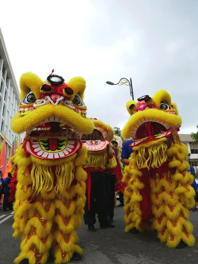 Parata di ballo di leone fotografie stock libere da diritti