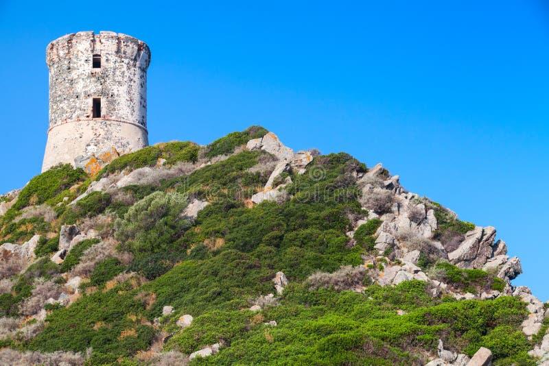 Paratatoren Oude Genoese-toren, Corsica stock afbeelding