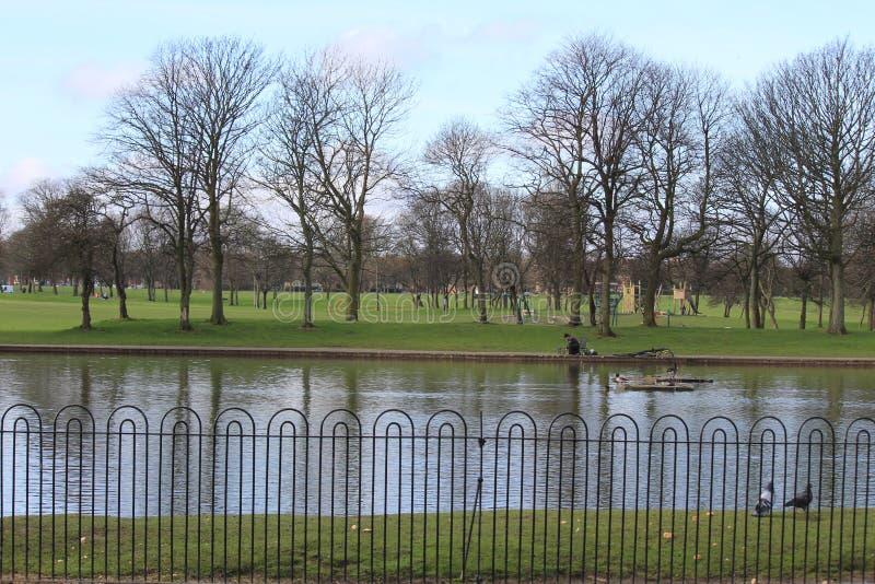 Parc在利物浦,英国 免版税库存照片
