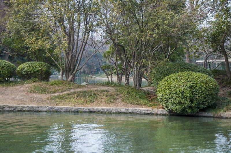 Parc au bord du lac image stock