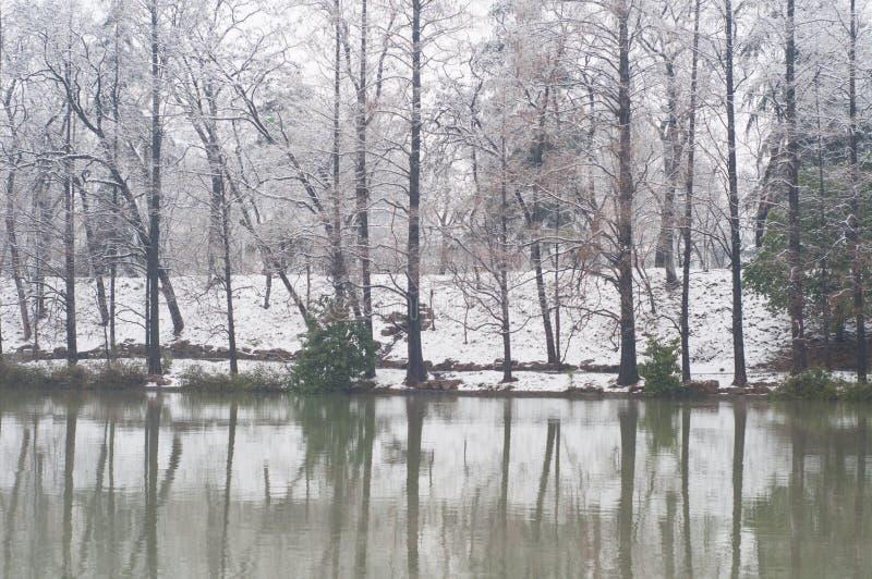 Parc au bord du lac photos libres de droits