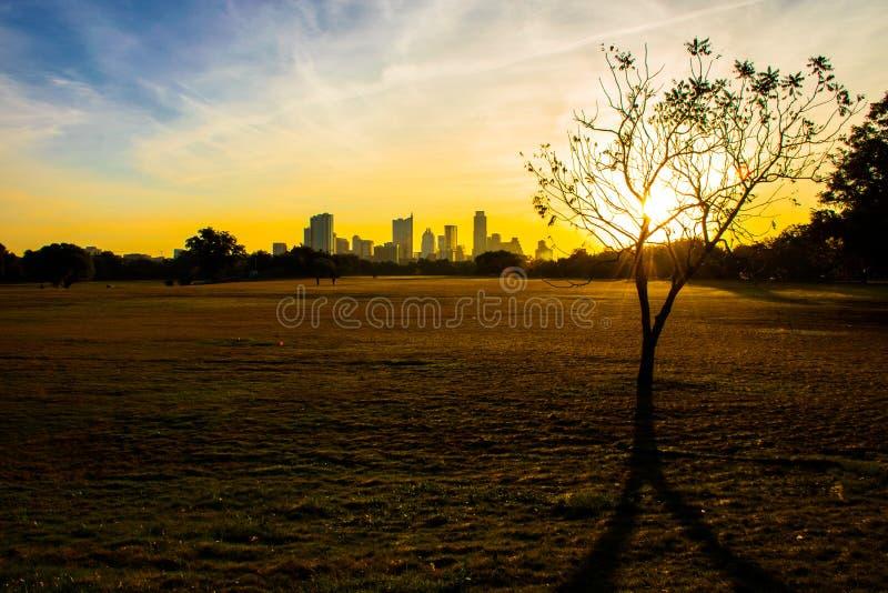 Parc Austin Texas Skyline de Zilker avec des rayons de soleil de lever de soleil à travers le champ photographie stock libre de droits