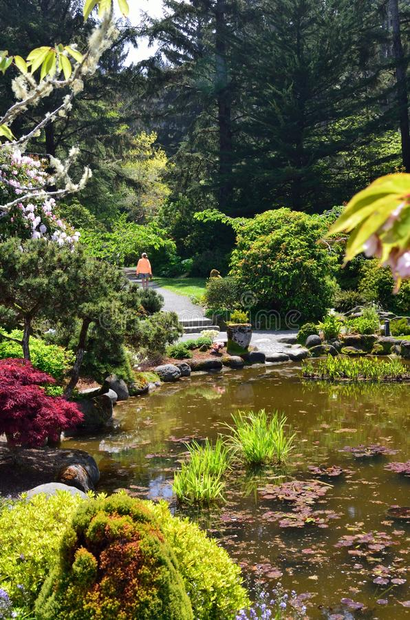Parc d'état d'acres de rivage, Charleston Oregon photographie stock libre de droits