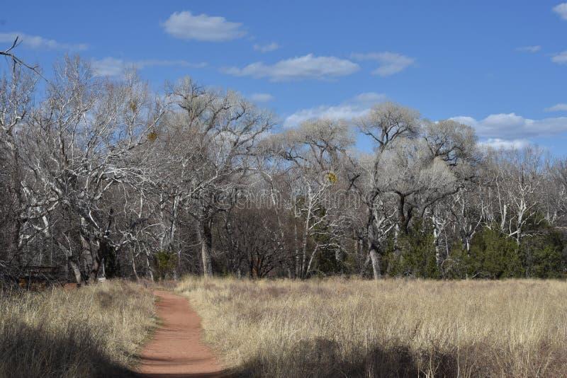 Parc d'état rouge de roche Sedona, AZ photographie stock libre de droits