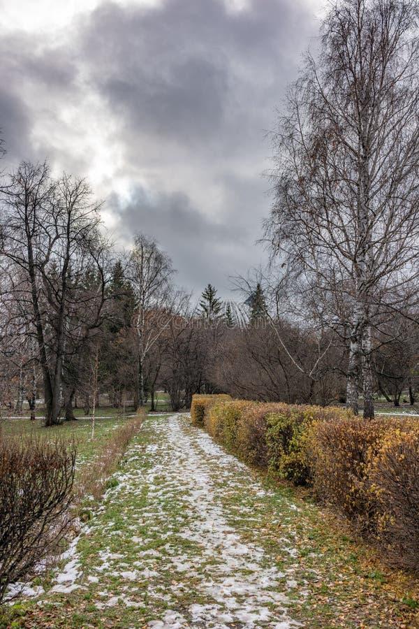 Parc d'automne un jour obscurci sombre photo libre de droits