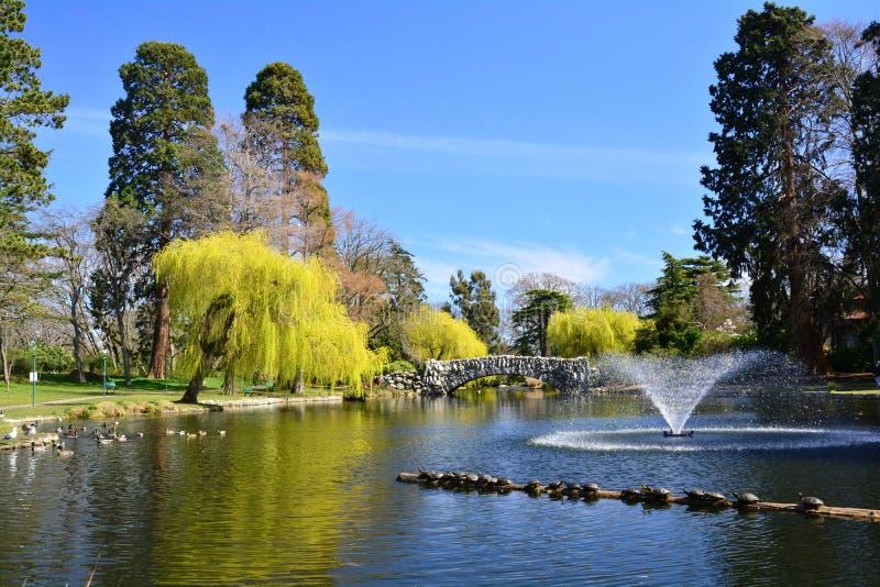 Parc de Beacon Hill dans Victoria AVANT JÉSUS CHRIST, Canada images libres de droits