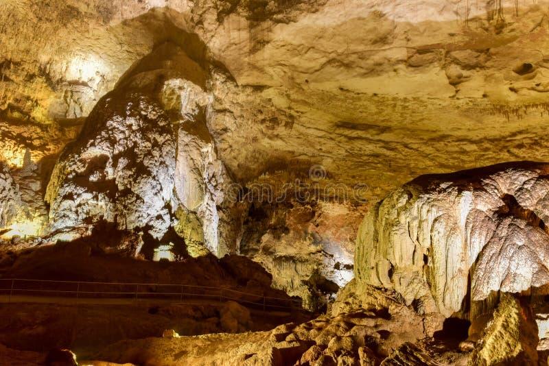 Parc de caverne de rivière de Camuy images libres de droits