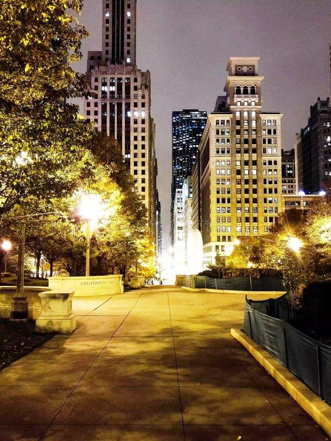 Parc de Chicago photographie stock libre de droits