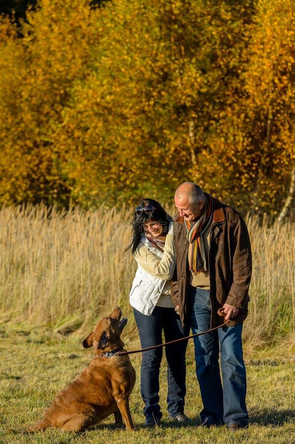 Parc de coucher du soleil d'automne de chien de formation de couples image stock