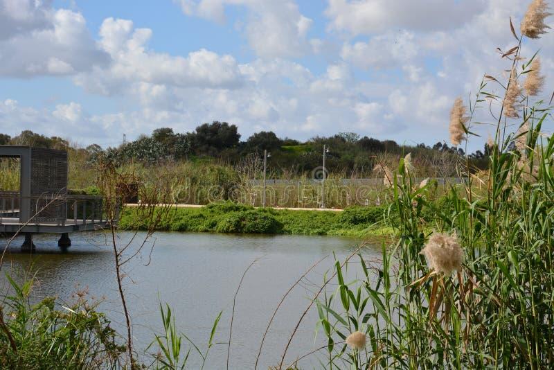 Parc de Hasharon d'auge images libres de droits