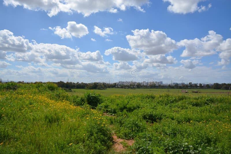 Parc de Hasharon d'auge image libre de droits