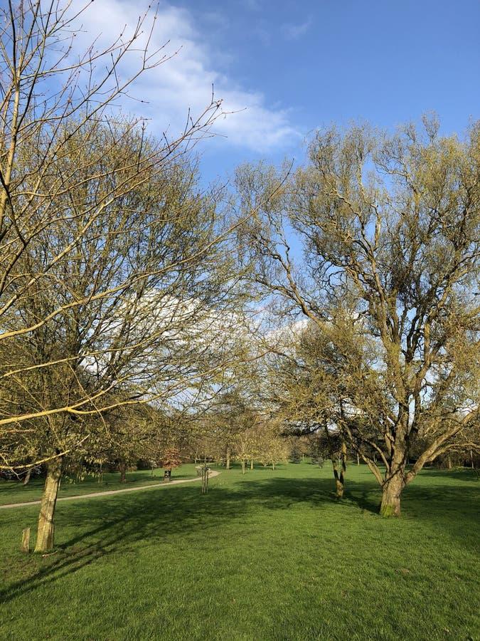 Parc de Knighton photo libre de droits