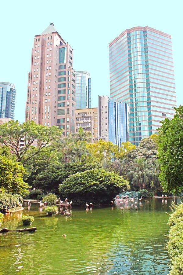 Parc de Kowloon à Hong Kong images libres de droits