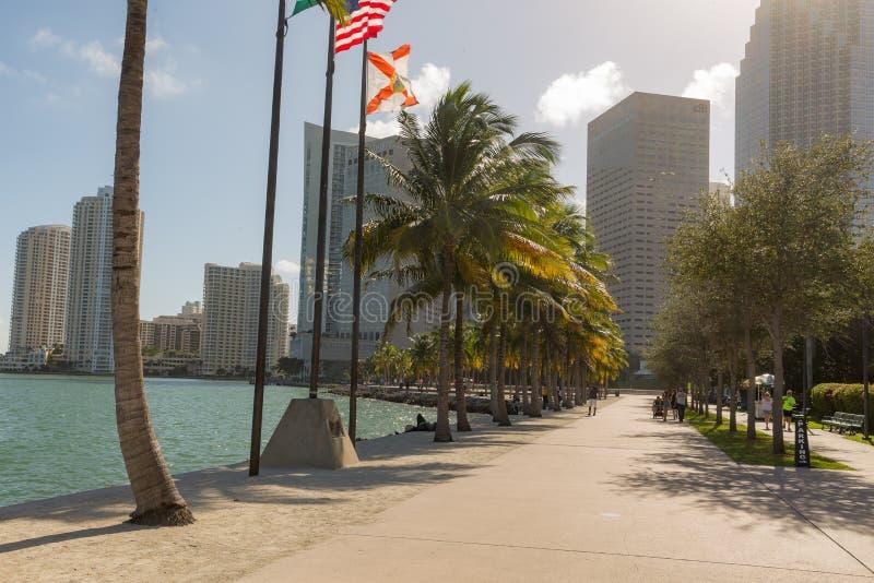 Parc de Miami Bayfront photo stock