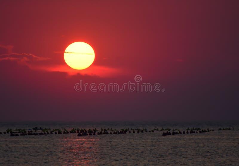 Parc de paysage de la Slov?nie Strunjan de coucher du soleil image libre de droits
