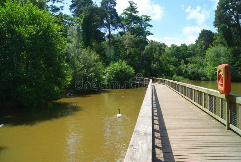 Parc de Tilgate image libre de droits