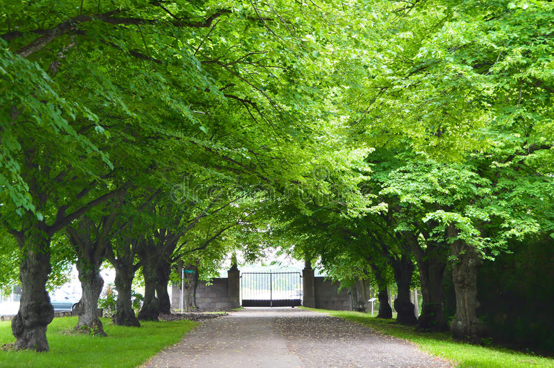 Parc de Toila en Estonie image stock