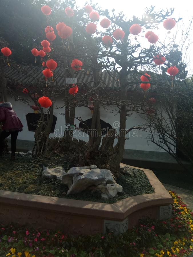Parc de Tonghua photo libre de droits