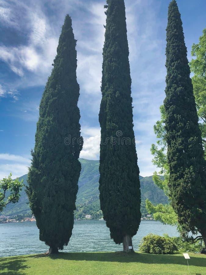 Parc de villa Melzi à Bellagio au lac italien célèbre Como, ciel nuageux image stock