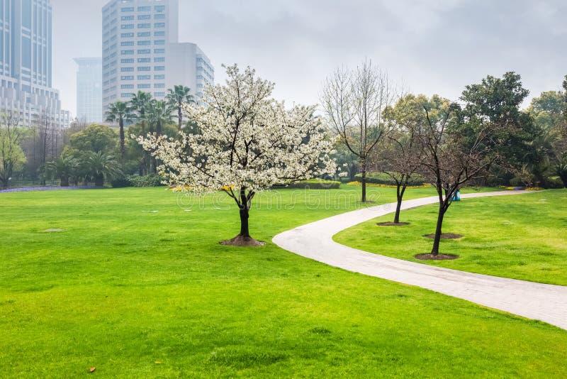 Parc de ville au printemps image libre de droits