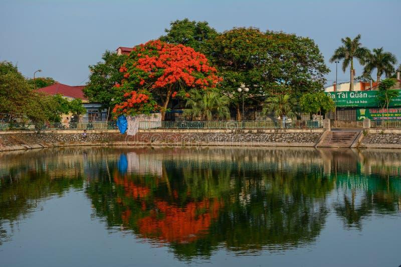 Parc de ville avec le lac photographie stock libre de droits
