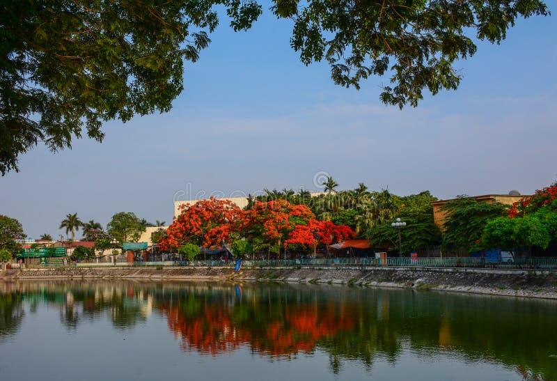 Parc de ville avec le lac images libres de droits