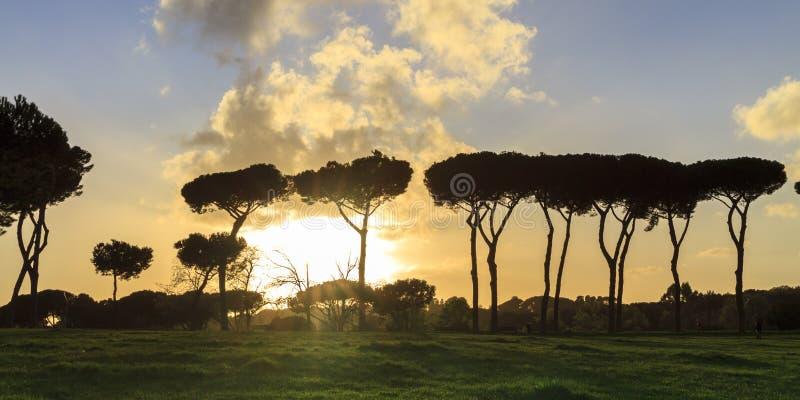 Parc de ville de Rome images stock