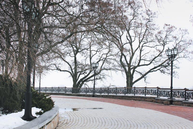 Parc en hiver Arbres sans lames photographie stock