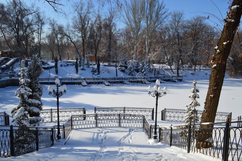 Parc en hiver, nature en hiver, hiver, parc, lac en hiver, neige, lac dans la neige, secteur de parc photographie stock libre de droits