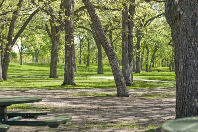 Parc extérieur avec des arbres et des tables de pique-nique photo stock