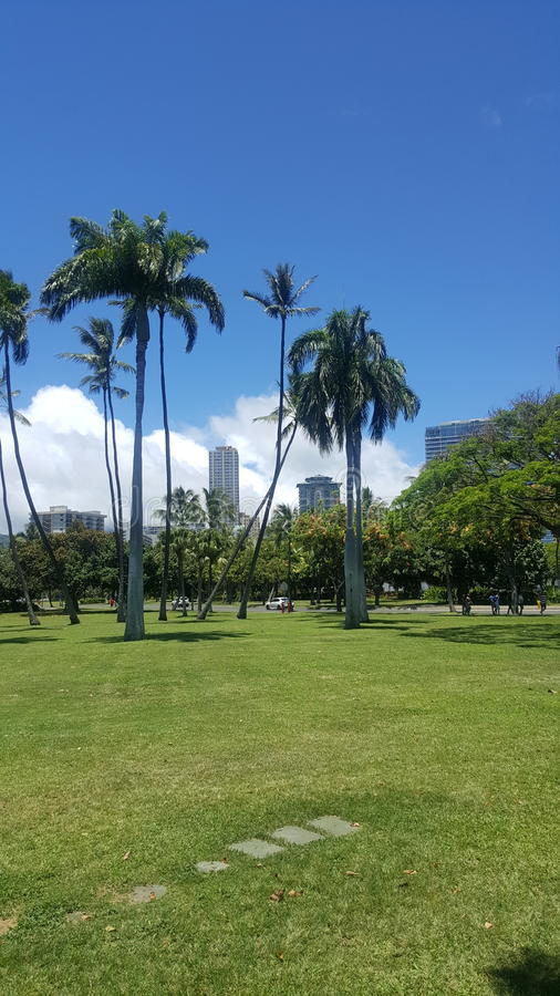 Parc hawaïen image stock