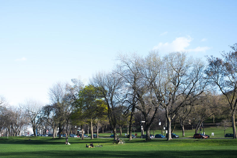 Parc Jeanne Manca obrazy royalty free