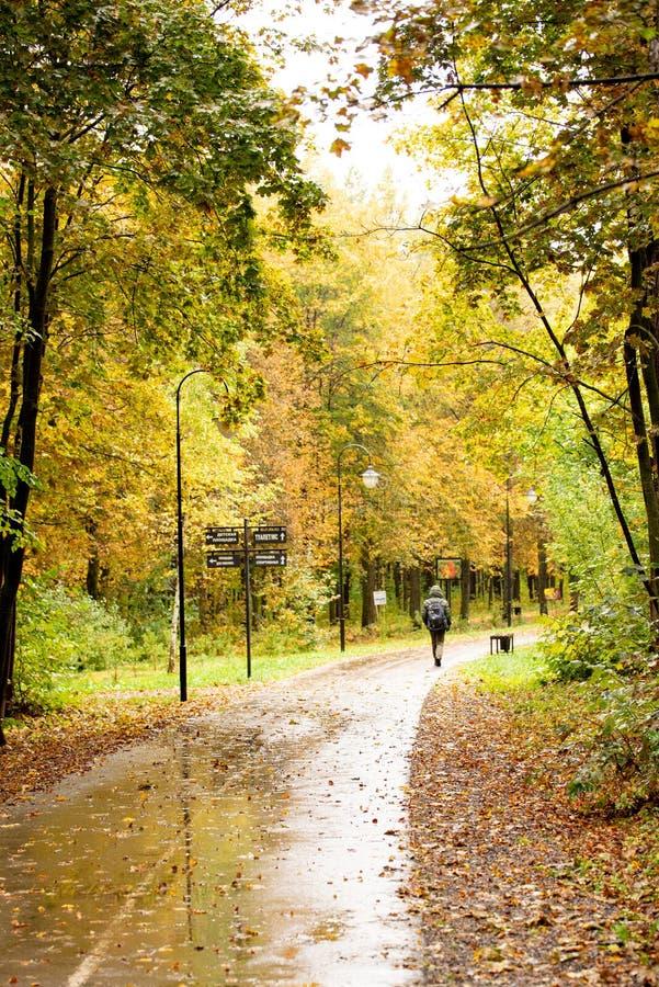 Parc municipal avec promeneurs en automne images libres de droits