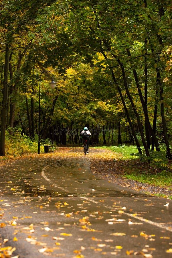 Parc municipal avec promeneurs en automne image stock