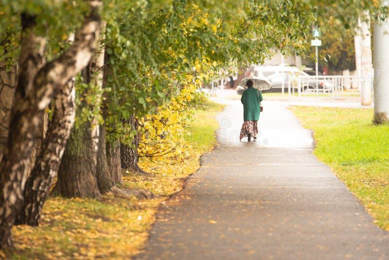 Parc municipal avec promeneurs en automne photo libre de droits