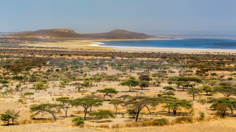 Parc national d'Abjatta-Shalla photo libre de droits