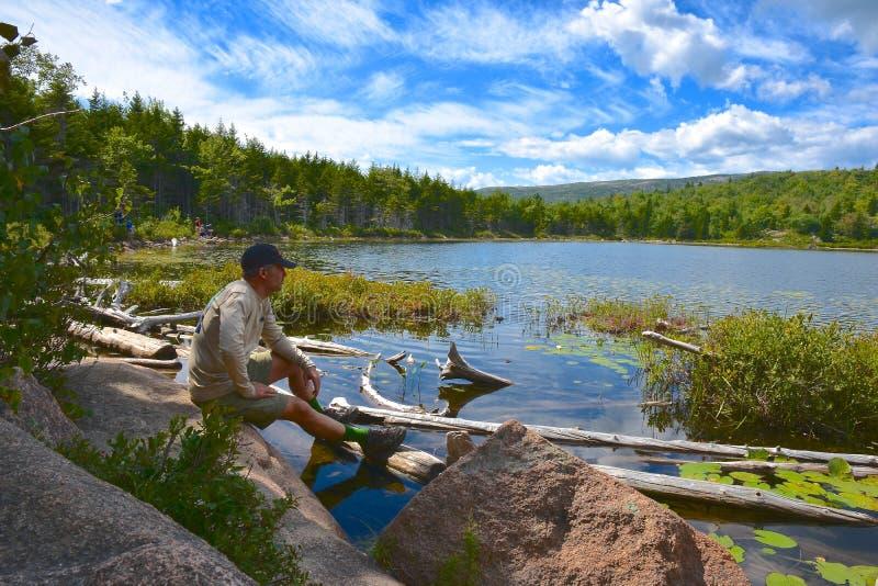 Parc national d'Acadia photo libre de droits