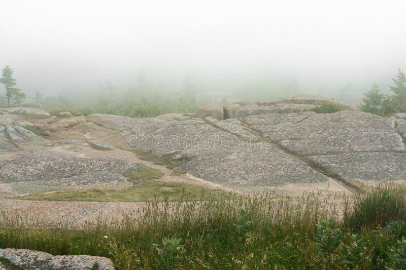 Parc national d'Acadia brouillard photographie stock