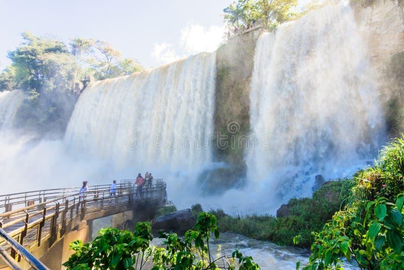 Parc national d'Iguassu photo libre de droits