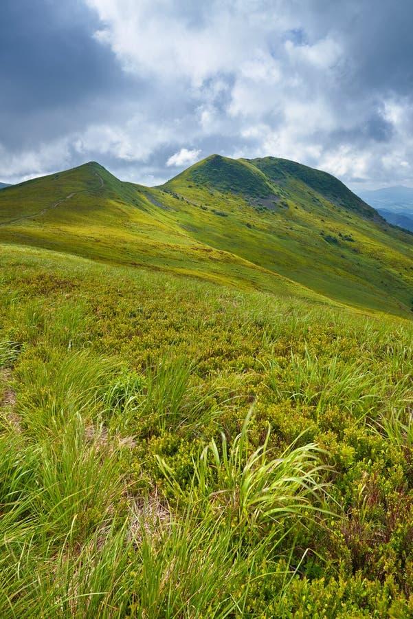 Parc national de Bieszczady Paysage d'herbe de montagnes carpathiennes photographie stock