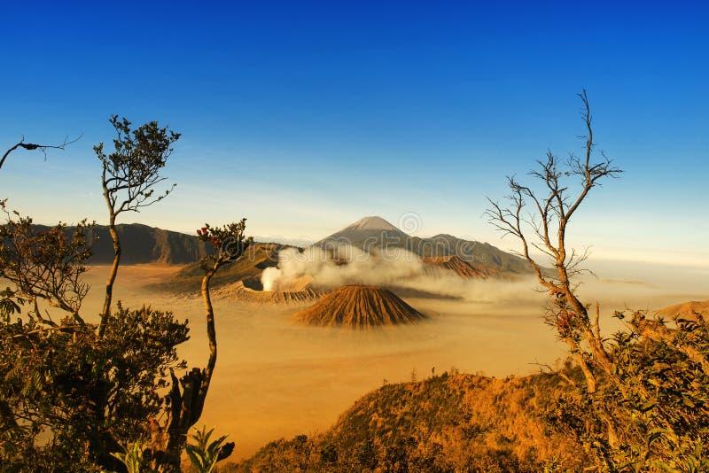 Parc national de Bromo Tengger Semeru photographie stock libre de droits