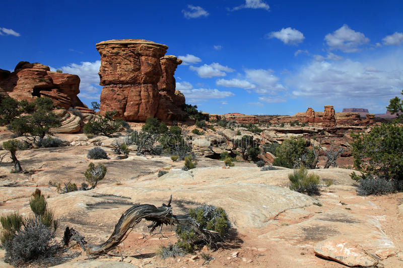 Parc national de Canyonlands photo stock