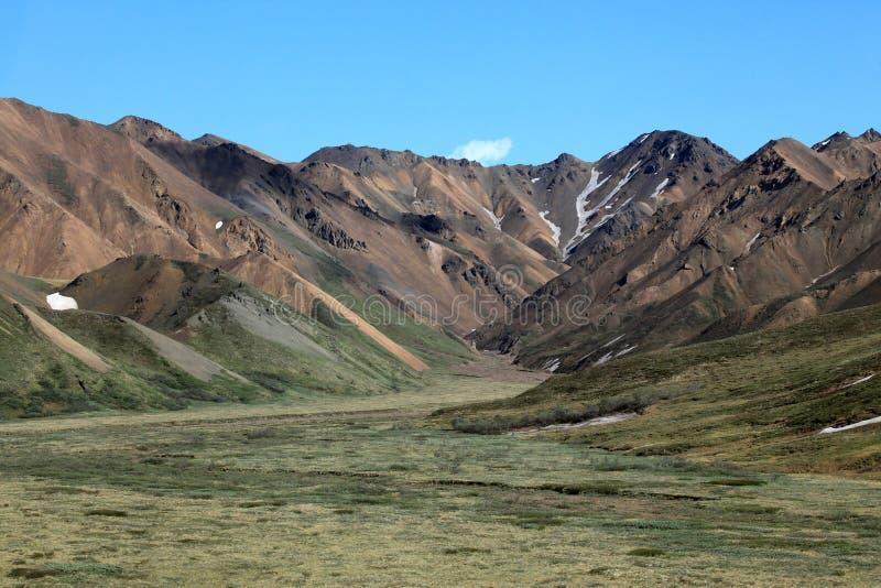 Parc national de Denali photographie stock libre de droits