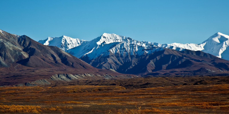 Parc national de Denali en automne photographie stock