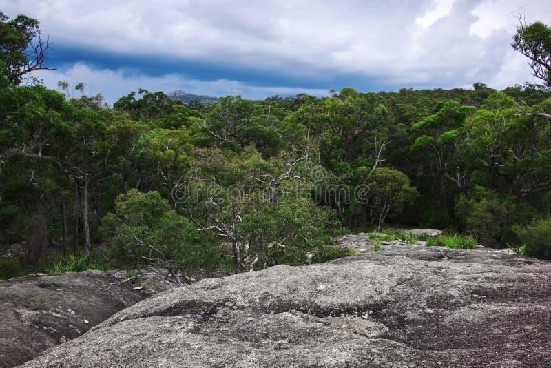 Parc national de Girraween photographie stock libre de droits
