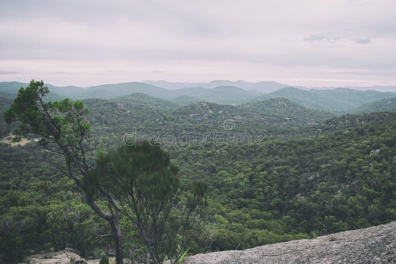 Parc national de Girraween photo stock