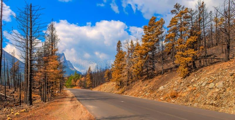 Parc 2015 national de glacier de Reynolds Creek Wildland Forest Fire de conséquence images stock