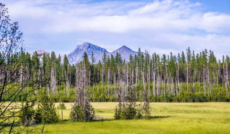 Parc national de glacier de McDonald de lac image libre de droits