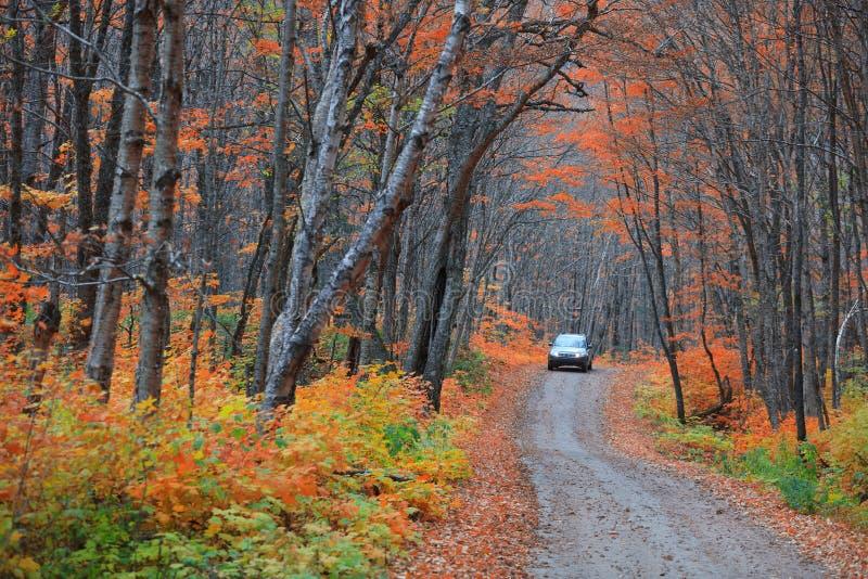 Parc national de Parc de la Jacques-cartier au Québec image libre de droits