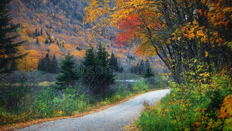 Parc national de Parc de la Jacques-cartier au Québec image stock